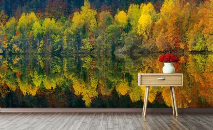 Photo wallpaper Autumn Forest Lake